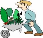 gardening (800x706)