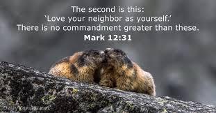 Love thy neighbour 3